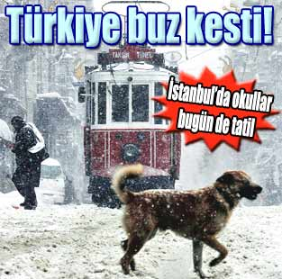 T�rkiye buz kesti  G�ncel  Milliyet Gazete