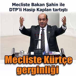 Bakan �ahin ile DTP'li Kaplan K�rt�e i�in tart��t�  Siyaset  Milliyet �nternet